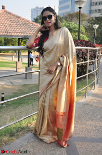 Angana Roy in Silk Saree at Teaching Tree Carnival .xyz 029.JPG