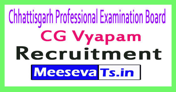 Chhattisgarh Professional Examination Board CG Vyapam Recruitment Notification 2017