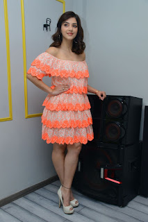 Actress Mehreen Pirzada stills at Aswathama Movie Interview