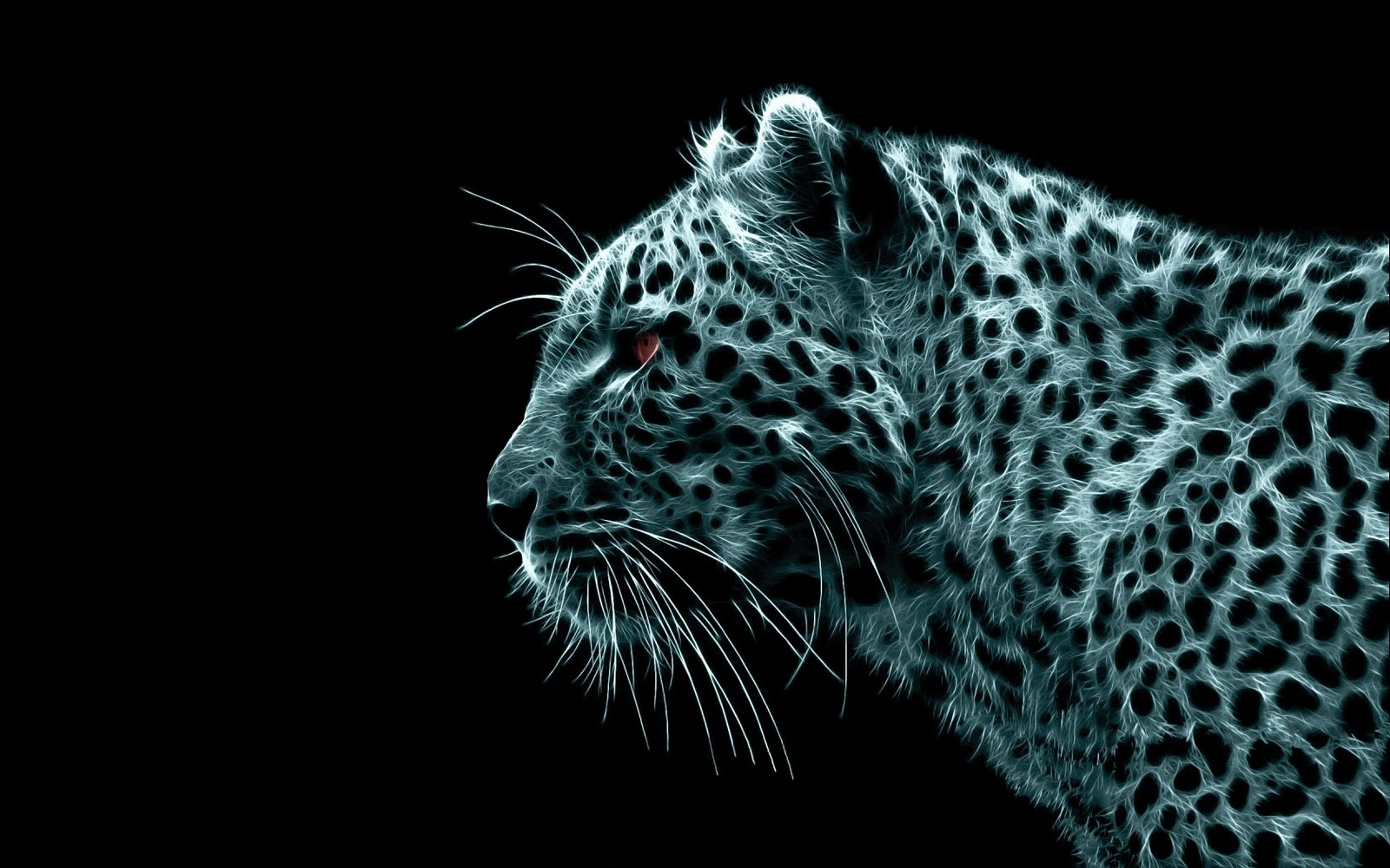 Qq wallpapers 20 big cat wallpapers - Cool backgrounds of cats ...
