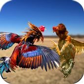 Farm Dadly Rooster Fighting Apk v1.0 [Game sambung ayam] Unlimited Money