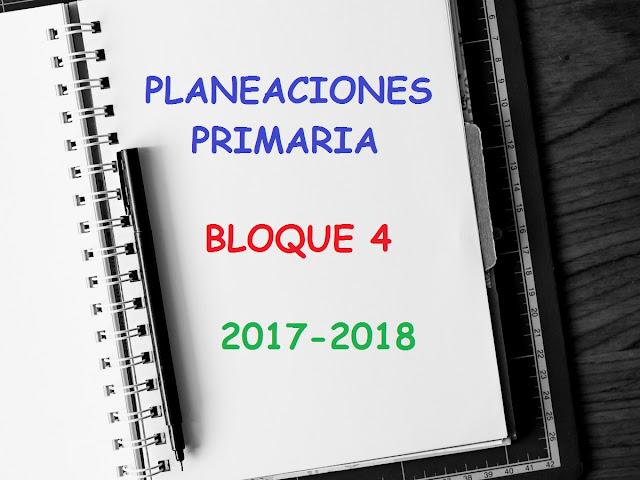 planificaciones,bimestre 4,primer grado,sexto grado,segundo grado