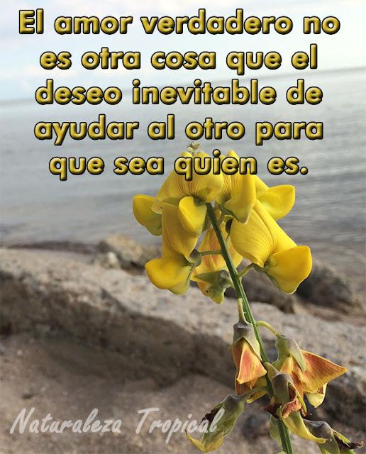 El amor verdadero no es otra cosa que el deseo inevitable de ayudar al otro para que sea quien es.