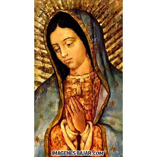 Imágenes de Virgen de Guadalupe: Bellas y milagrosas ⭐