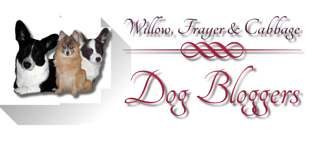 willow and frayers blog