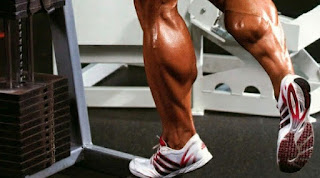 calf training tips