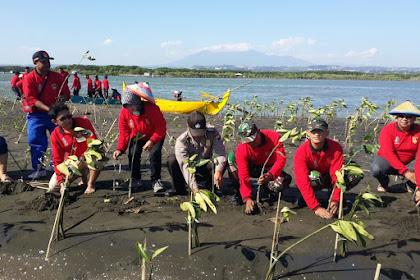 Peringati Hari Siaga Bencana, Tagana Semarang Tanam Mangroove
