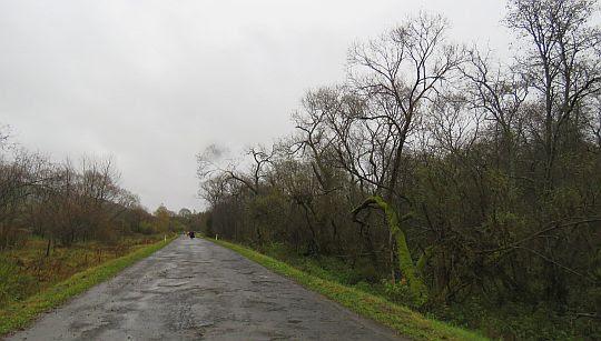 Droga na Przełęcz Beskid.
