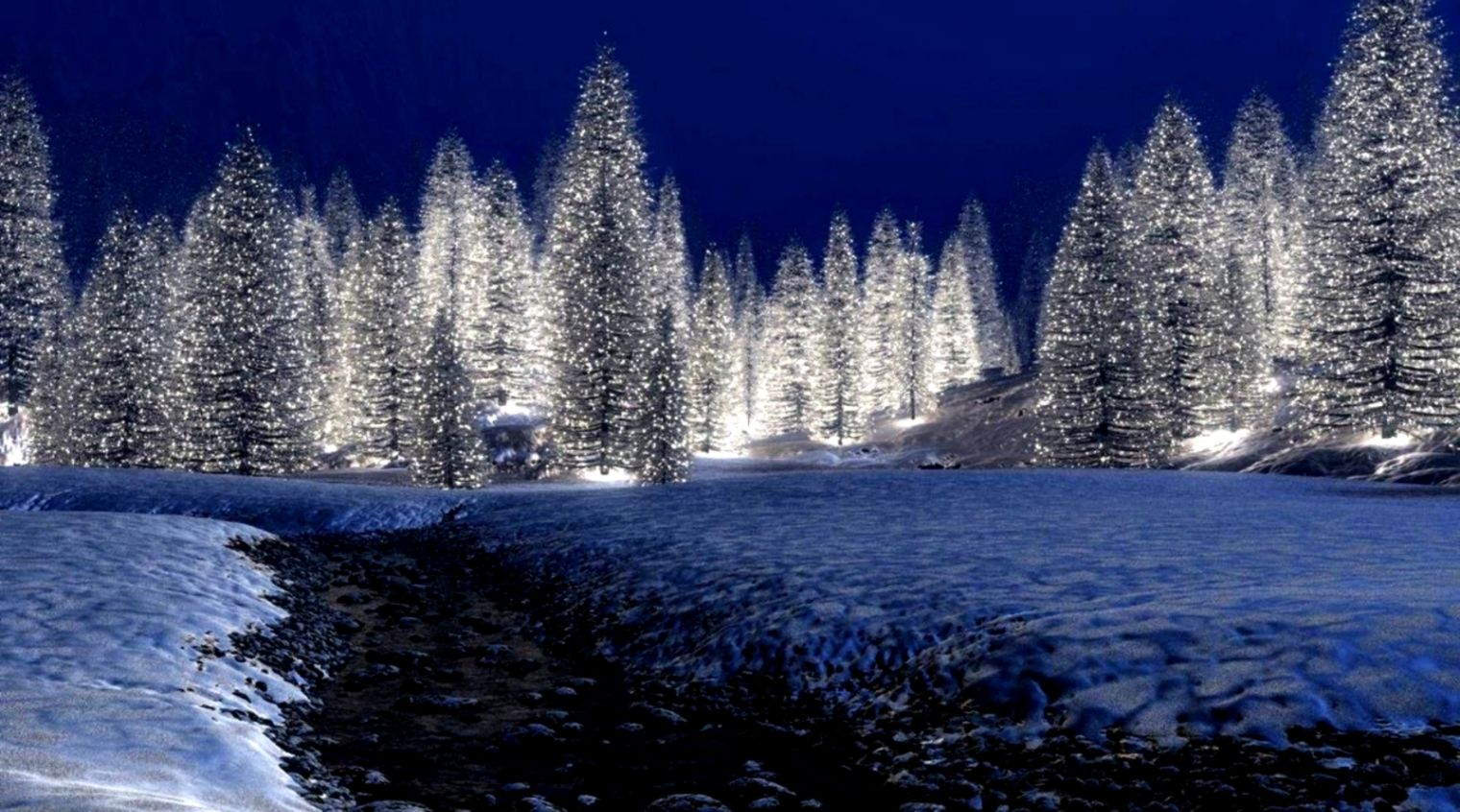 winter night christmas snow trees forest lights wallpaper full hd