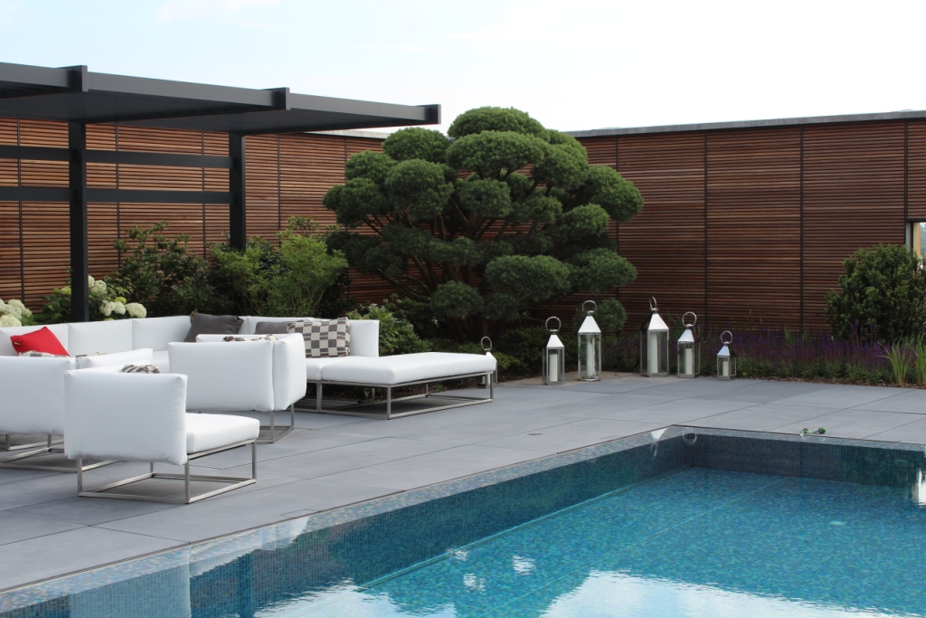 Gartenblog geniesser garten sichtschutz im garten teil 2 - Sichtschutz pool ...