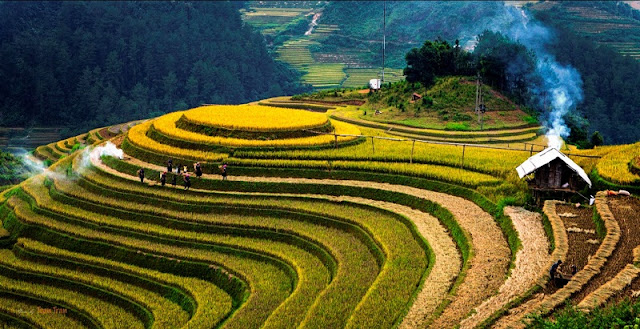 How different is Mu Cang Chai in September? 1