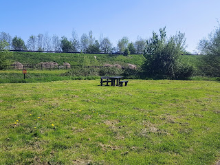 A Picnic Table in a Field at Waterhall Park