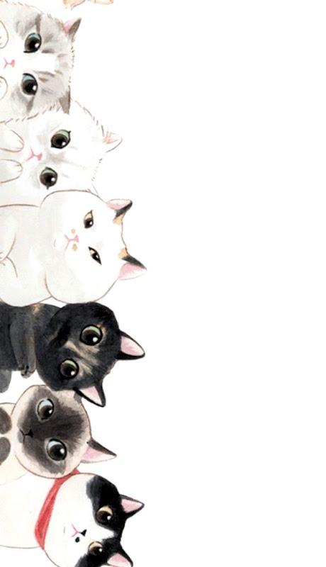 Funny Cat Creative Cartoon Hd Wallpaper Carik Wallpapers
