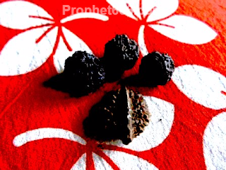 Selection of Rudraksha Beads for health and Indian paranormal remedies