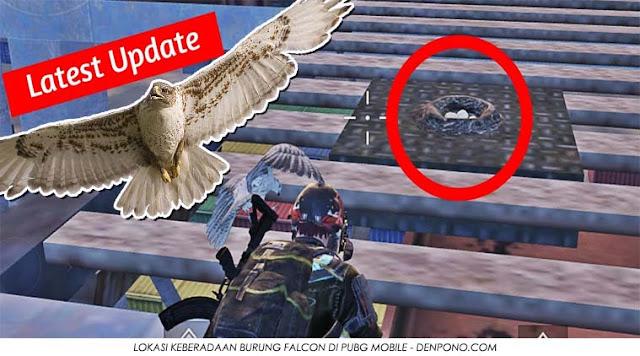 Inilah Lokasi Companion Burung Falcon atau Elang di PUBG Mobile