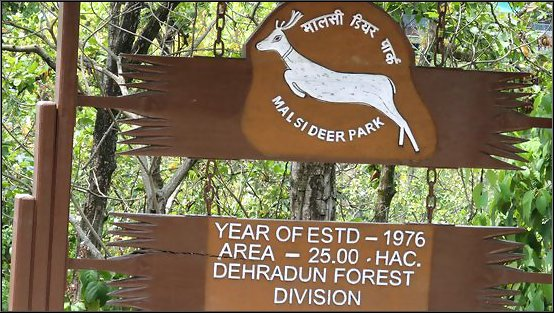 deer-park-dehradun
