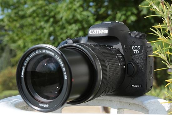 Apa Perbedaan Kamera Prosumer dengan DSLR
