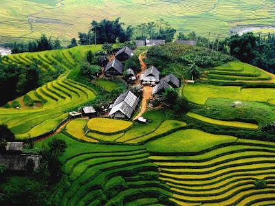 enjoy landscape in Sapa