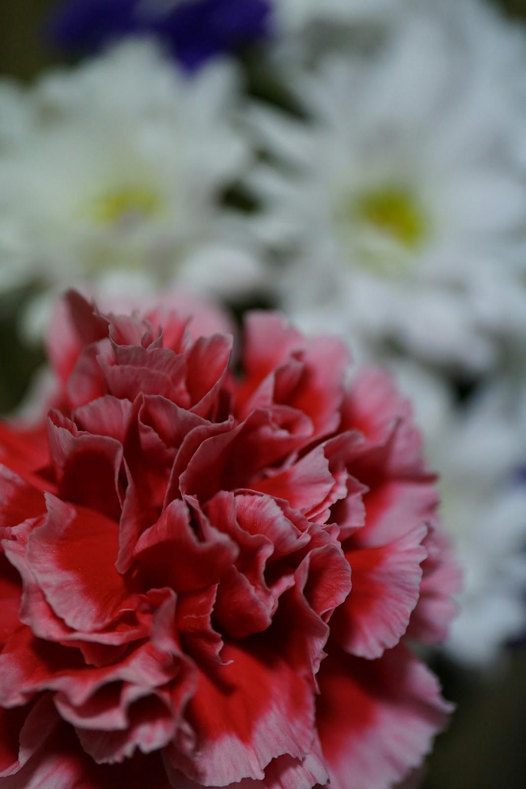 楽しげに咲いた花