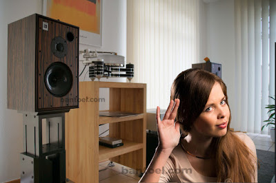 Inilah Penyebab Suara Speaker Sember Dan Cara Memperbaikinya