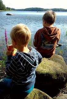 pojat, järvi, maisema