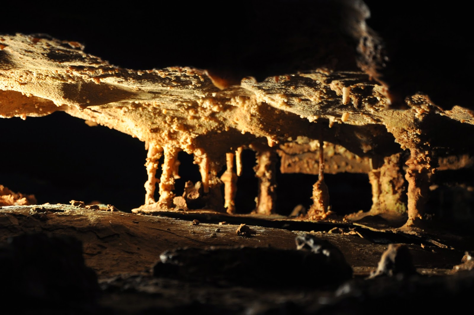 Bull Shoals Caverns Hickory Ridge Studio