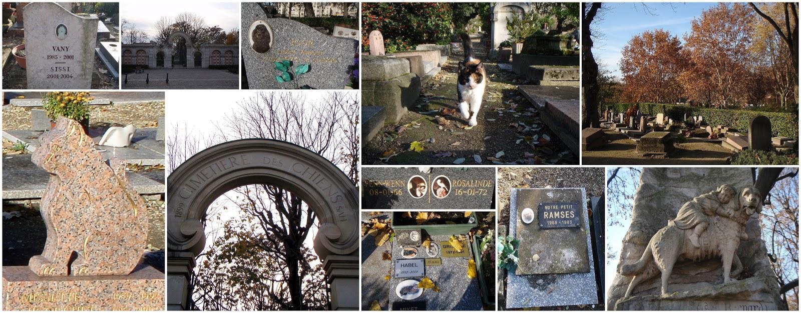 Cmentarz dla zwierząt we francuskim Asnières