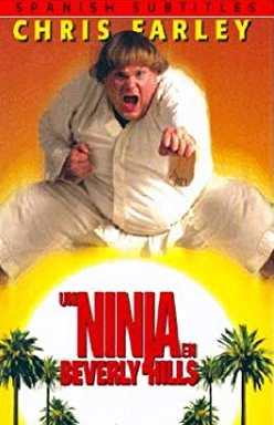 Un ninja en Beverly Hills (ninja blanco) (1997) Online latino