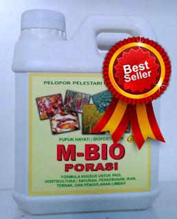 pupuk bawang merah M-BIO