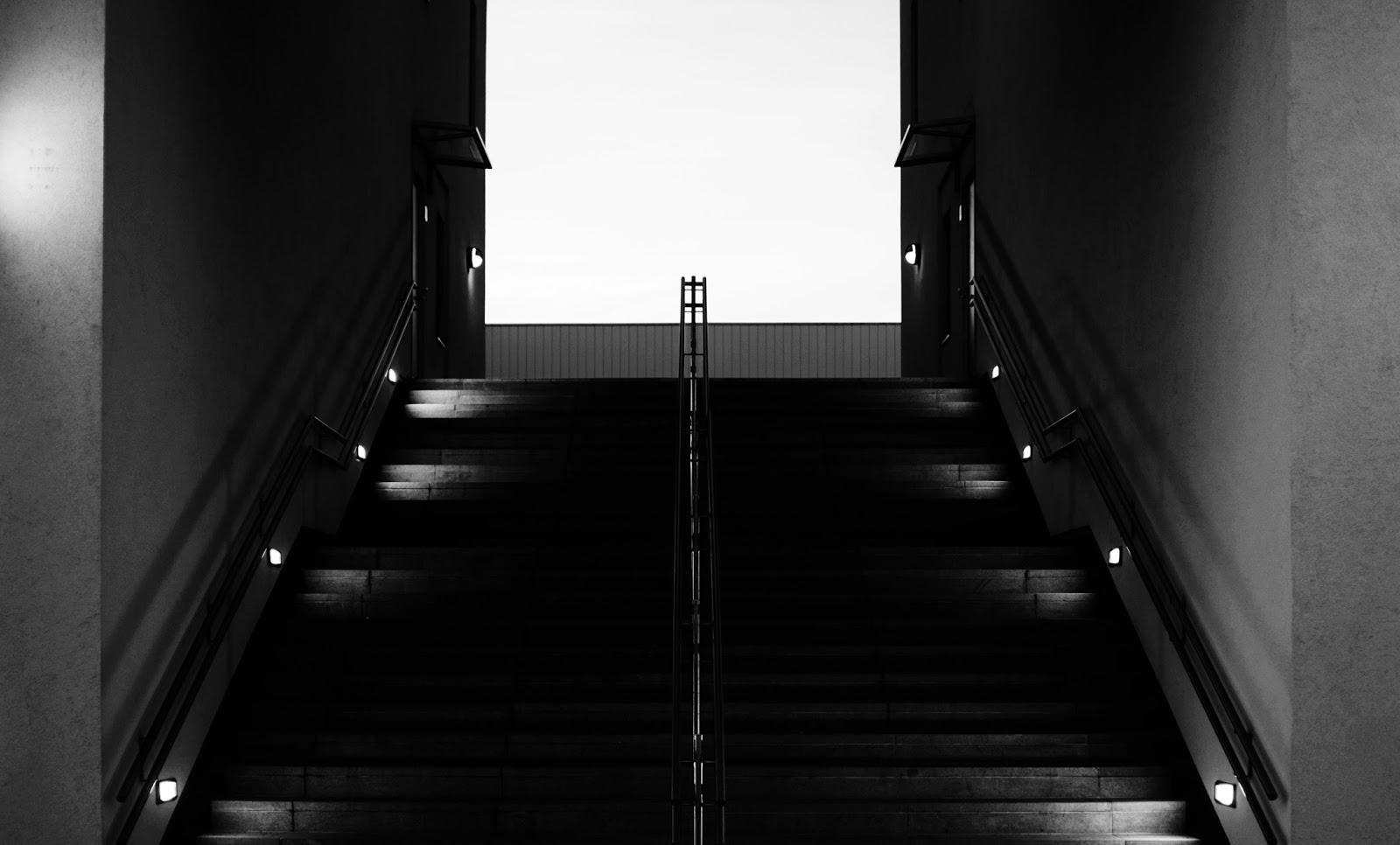 projeto fotografico fotologia tema do mês simetria e algumas pecuinhas