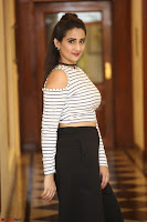 Manjusha in sleevelss crop top and black skirt at Darshakudu pre release ~  Exclusive Celebrities Galleries 051.JPG