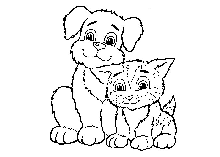 educatia conteaza  animale domestice si puii lor