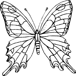 Rare And Cute butterfly coloring page