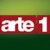 Arte 1 passa a ser exibido em SD na Oi Tv