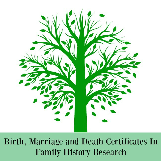 Birth-Marriage-and-Death-Certificates-In-Family-History-Research-text-below-illustration-of-a-tree