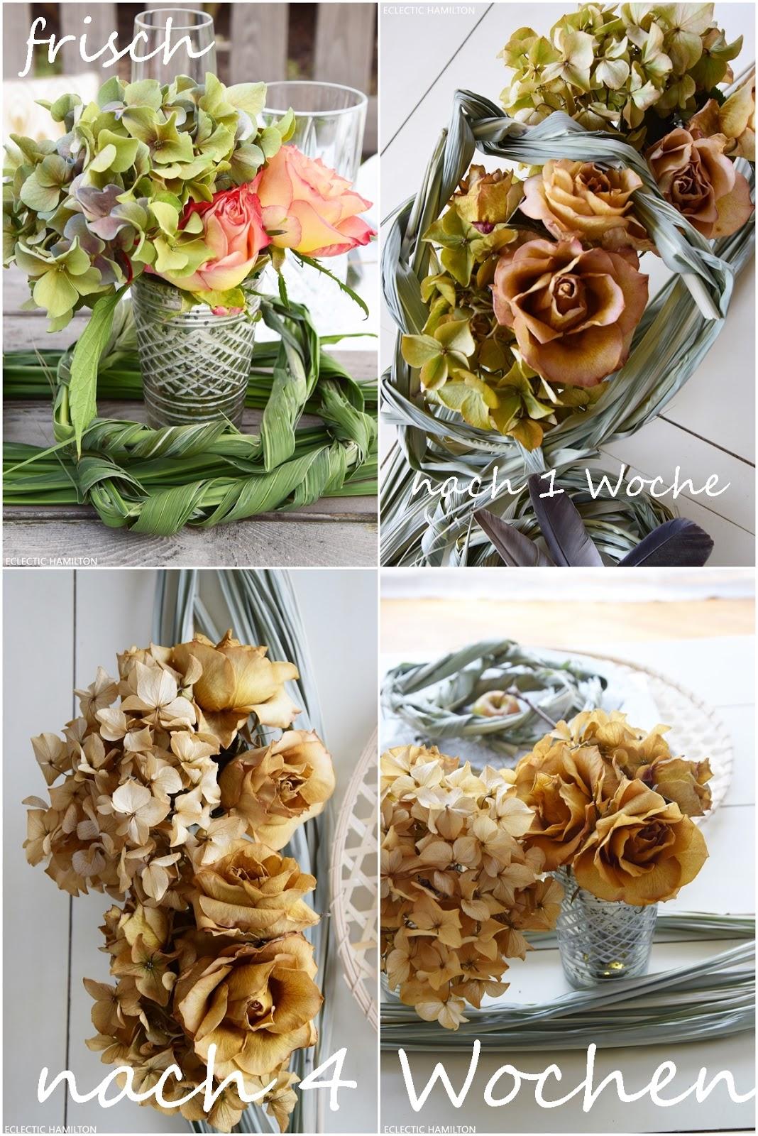 Hortensien Trocknen wir ihr hortensien perfekt trocknet und ideen zur deko eclectic