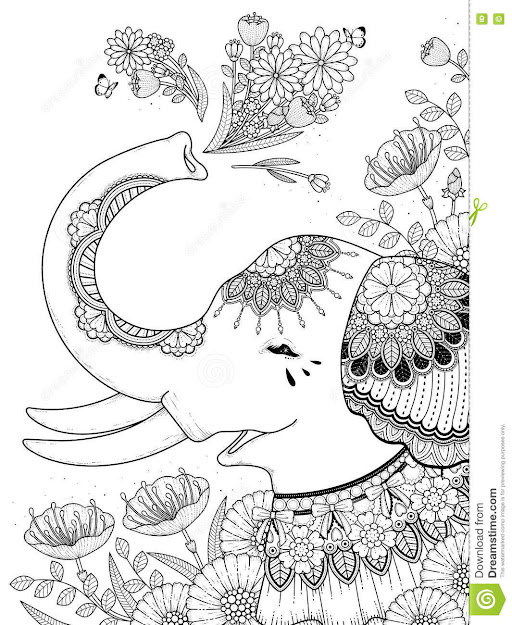 Gorgeous Elephant Coloring Page