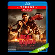 La rebelión de los muertos (2015) BRRip 720p Audio Dual Latino-Ingles