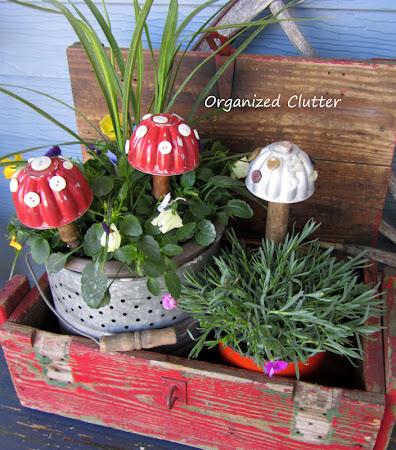 Jello Mold Container Garden Toadstools