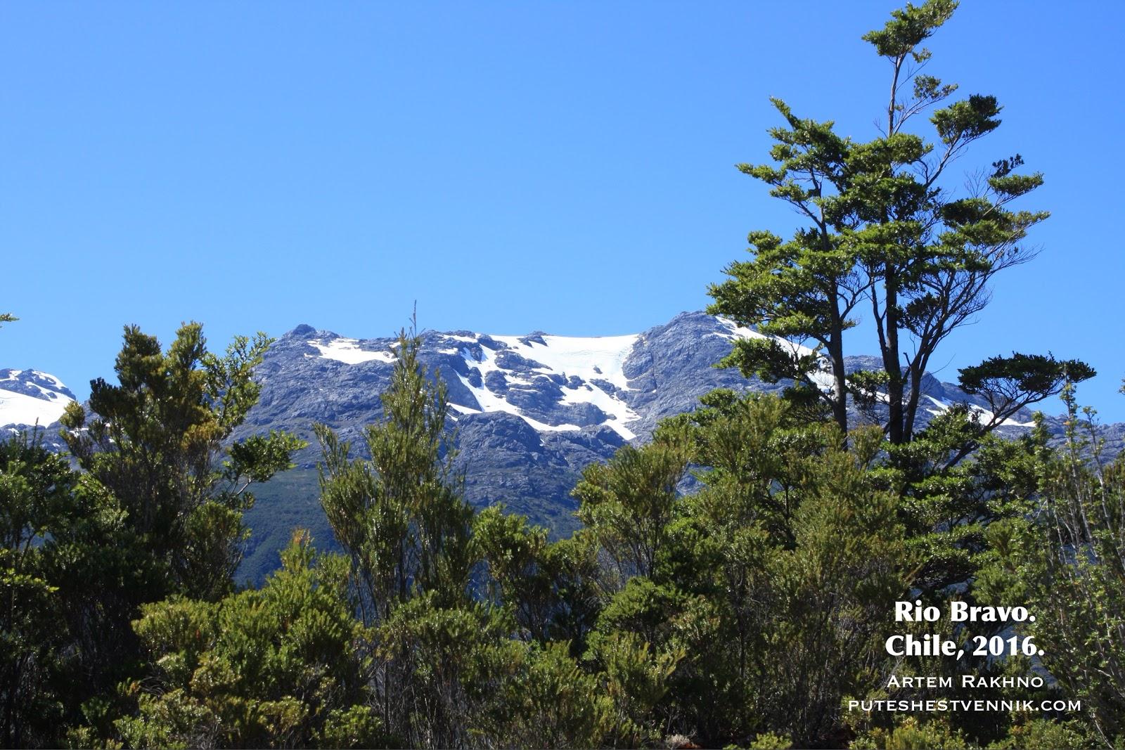 Лес и горы со снегом