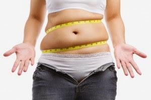 graisse abdominale sous cutanée