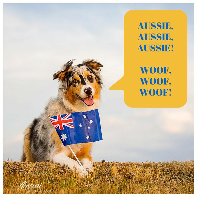 Puppy Day Australia