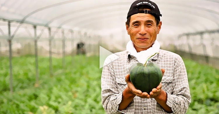 "World's first ""heart-shaped"" watermelon successfully created by Japanese farmer"