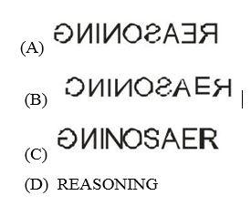 SSC Quiz : General Intelligence | 18 -11 -17