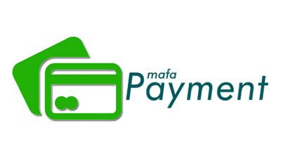 Survey Pembayaran Online IPMAFA