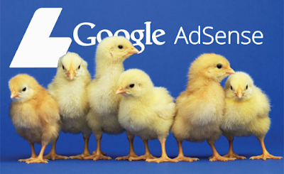 Kenali Beberapa Jenis Akun Google Adsense Terbaru