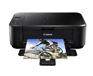 Canon Pixma MG2100 Series Printer