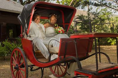 mariés dans calèche jardin aux papillons guadeloupe
