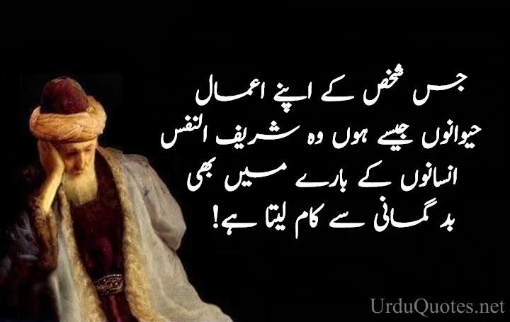 Maulana Rumi Quotes in Urdu