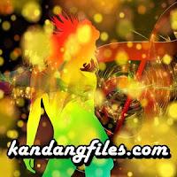 Minang Lamo - Bungo Anjalai (Full Album)